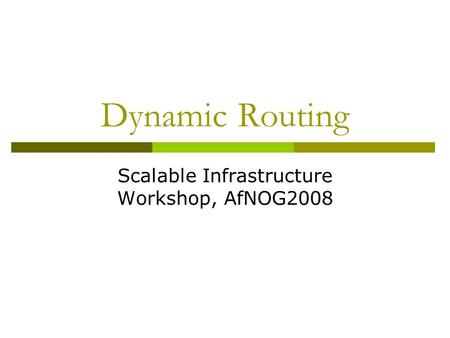 Dynamic Routing Scalable Infrastructure Workshop, AfNOG2008.