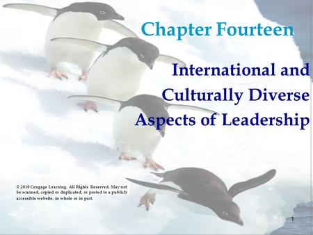 Chapter Fourteen International and Culturally Diverse
