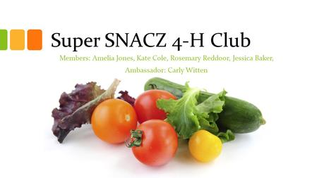 Super SNACZ 4-H Club Members: Amelia Jones, Kate Cole, Rosemary Reddoor, Jessica Baker, Ambassador: Carly Witten.