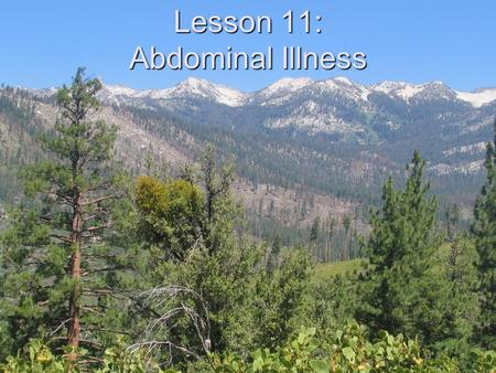 Lesson 11: Abdominal Illness. Objectives Demonstrate a field assessment for abdominal pain/discomfort List signs/symptoms of serious abdominal problems.