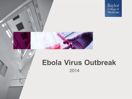 2014 Ebola Virus Outbreak. What is a Virus? Viruses are microscopic particles (10 – 400 nm). Viruses are made of genetic material (DNA or RNA) surrounded.