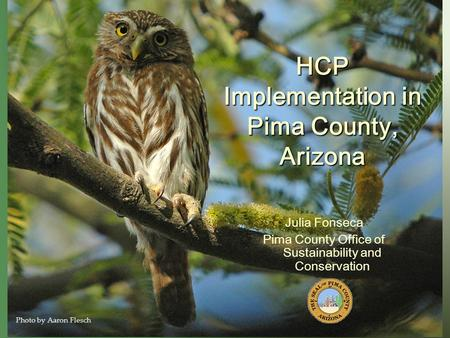 HCP Implementation in Pima County, Arizona Julia Fonseca Pima County Office of Sustainability and Conservation Photo by Aaron Flesch.