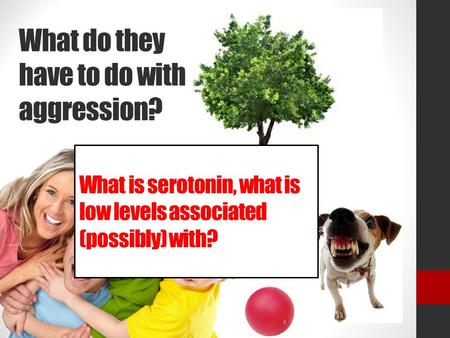 What do they have to do with aggression? What is serotonin, what is low levels associated (possibly) with?