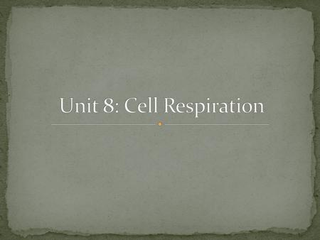 Unit 8: Cell Respiration