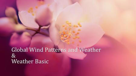 Global Wind Patterns and Weather & Weather Basic