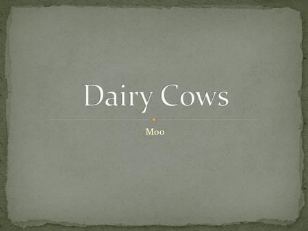 Moo. Identify major breeds of dairy cattle Define dairy terms Identify parts of a dairy cow Distinguish different dairy products.