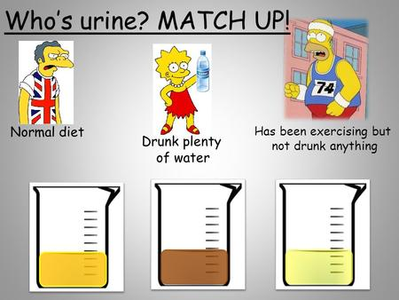 Normal diet Drunk plenty of water Has been exercising but not drunk anything Who's urine? MATCH UP!
