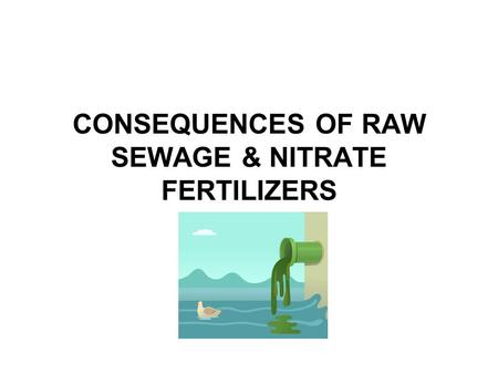 CONSEQUENCES OF RAW SEWAGE & NITRATE FERTILIZERS.