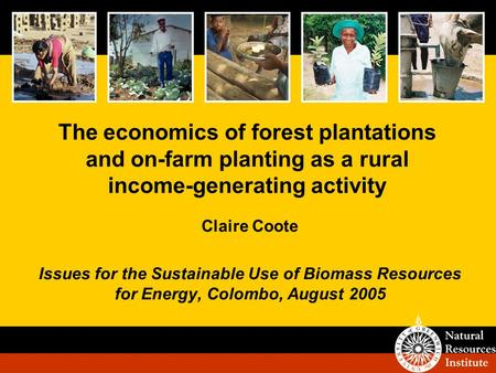The economics of forest plantations and on-farm planting as a rural income-generating activity Claire Coote Issues for the Sustainable Use of Biomass Resources.