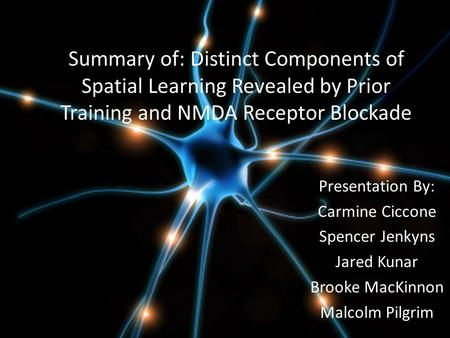 Summary of: Distinct Components of Spatial Learning Revealed by Prior Training and NMDA Receptor Blockade Presentation By: Carmine Ciccone Spencer Jenkyns.