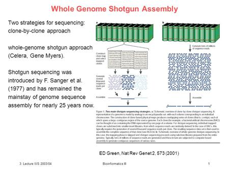 3. Lecture WS 2003/04Bioinformatics III1 Whole Genome Shotgun Assembly Two strategies for sequencing: clone-by-clone approach whole-genome shotgun approach.