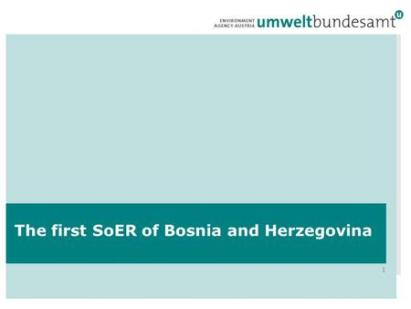 1 The first SoER of Bosnia and Herzegovina. 2 The difficult situation in Bosnia and Herzegovina.