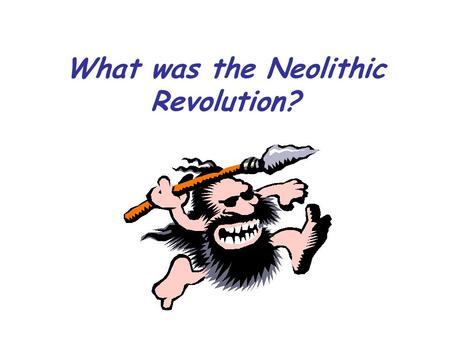 What was the Neolithic Revolution?