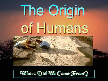 The Origin of Humans Where Did We Come From?.