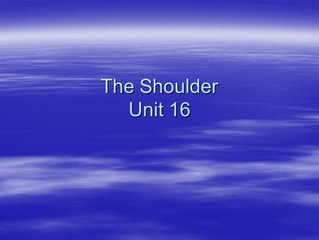 The Shoulder Unit 16.