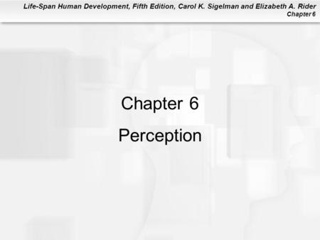 Chapter 6 Perception.