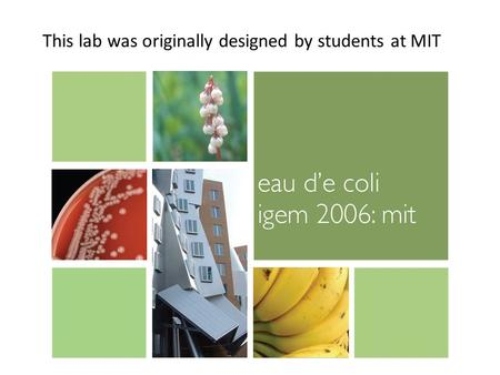 This lab was originally designed by students at MIT.