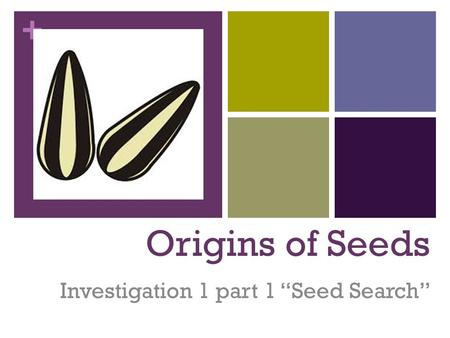 "Investigation 1 part 1 ""Seed Search"""