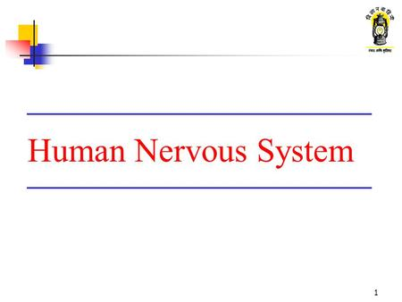 1 Human Nervous System. 2 What are we going to learn ? Function of nervous system Parts of nervous system Types of neurons Conduction of impulse through.