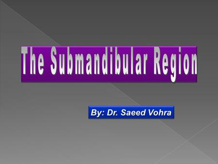 The Submandibular Region
