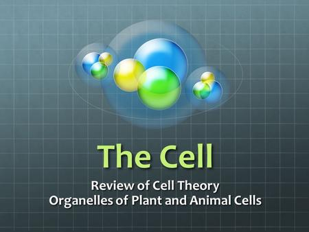 Review of Cell Theory Organelles of Plant and Animal Cells