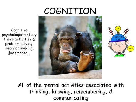 COGNITION All of the mental activities associated with thinking, knowing, remembering, & communicating Cognitive psychologists study these activities &
