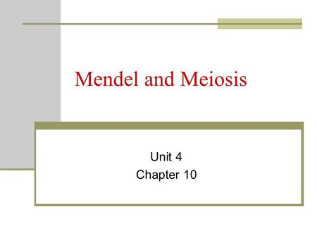 Mendel and Meiosis Unit 4 Chapter 10.