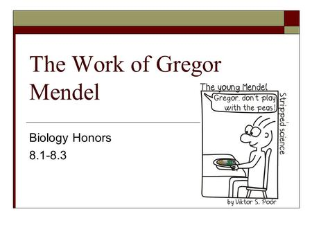 The Work of Gregor Mendel Biology Honors 8.1-8.3.