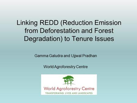 Linking REDD (Reduction Emission from Deforestation and Forest Degradation) to Tenure Issues Gamma Galudra and Ujjwal Pradhan World Agroforestry Centre.
