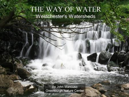 THE WAY OF WATER Westchester's Watersheds By John Mancuso Greenburgh Nature Center.