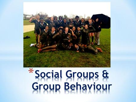 Social Scientists define a social group as a group of two or more people who have four characteristics: * They interact regularly and influence each other.