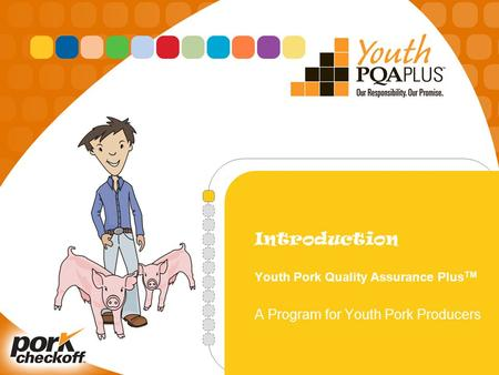 Introduction Youth Pork Quality Assurance Plus TM A Program for Youth Pork Producers.