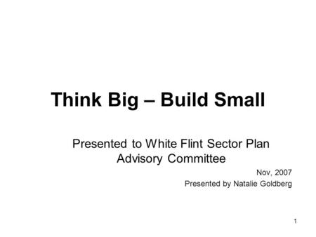 1 Think Big – Build Small Presented to White Flint Sector Plan Advisory Committee Nov, 2007 Presented by Natalie Goldberg.
