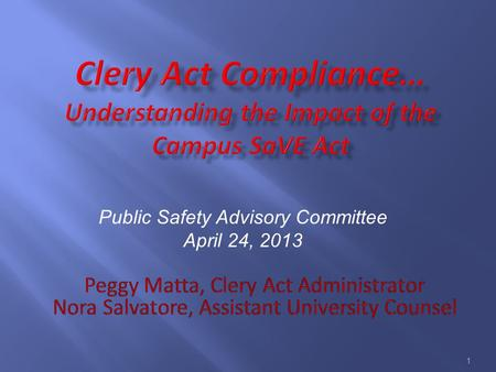 1 Public Safety Advisory Committee April 24, 2013.