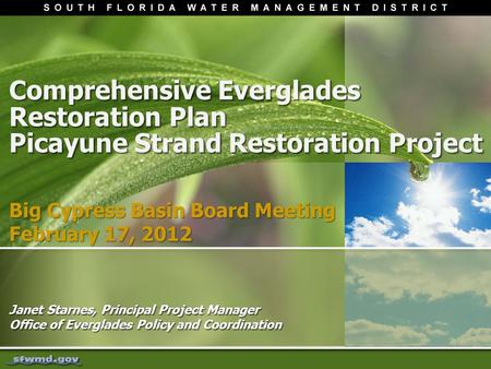 Comprehensive Everglades Restoration Plan Picayune Strand Restoration Project Janet Starnes, Principal Project Manager Office of Everglades Policy and.