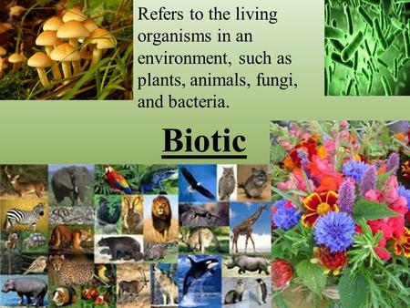 Biotic Refers to the living organisms in an environment, such as plants, animals, fungi, and bacteria.