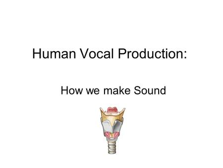 Human Vocal Production: