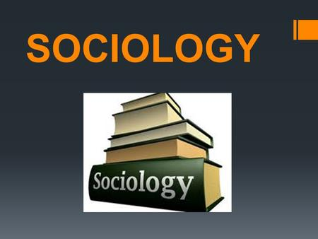 SOCIOLOGY. WHAT IS SOCIOLOGY?  Sociologists are interested in all sorts of topics. For example, some sociologists focus on the family, addressing issues.