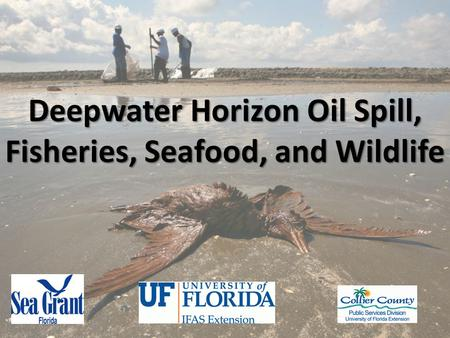 Multi-Agency Response Deepwater Horizon Oil Spill Mitigating