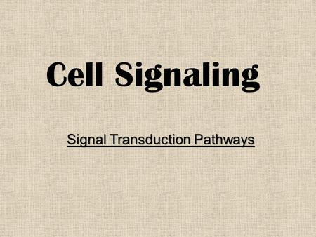 Cell Signaling Signal Transduction Pathways. Cellular Signaling Autocrine Signals – Diffuse from one part of a cell to another part of the same cell Synaptic.