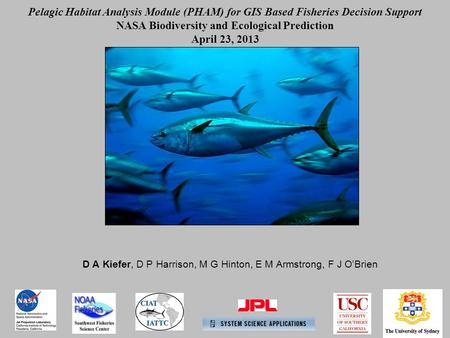 D A Kiefer, D P Harrison, M G Hinton, E M Armstrong, F J O'Brien Pelagic Habitat Analysis Module (PHAM) for GIS Based Fisheries Decision Support NASA Biodiversity.
