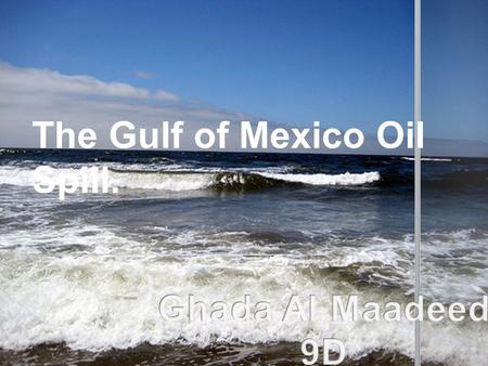 The Gulf of Mexico Oil Spill.. The 2010 Gulf of Mexico oil spill has been described as the worst environmental disaster in US history. On the 20th April,