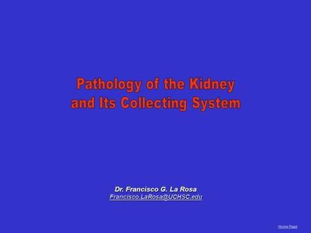 Pathology of the Kidney and Its Collecting System