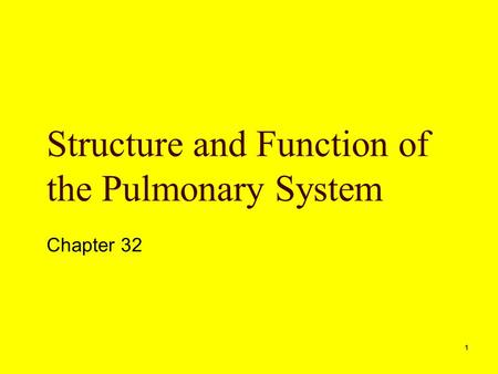 1 Structure and Function of the Pulmonary System Chapter 32.