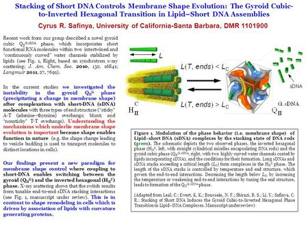 Stacking of Short DNA Controls Membrane Shape Evolution: The Gyroid Cubic- to-Inverted Hexagonal Transition in Lipid–Short DNA Assemblies Cyrus R. Safinya,