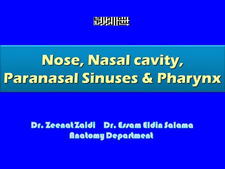 Nose, Nasal cavity, Paranasal Sinuses & Pharynx