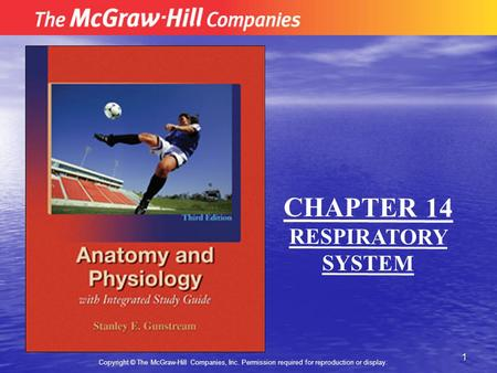 1 Copyright © The McGraw-Hill Companies, Inc. Permission required for reproduction or display. CHAPTER 14 RESPIRATORY SYSTEM.