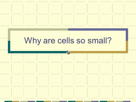 Why are cells so small?.