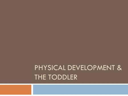 PHYSICAL DEVELOPMENT & THE TODDLER. Toddler  A name given to a child between the ages of 1 and 3 years old.