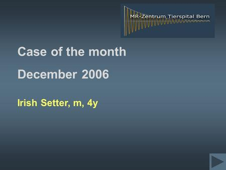 Case of the month December 2006 Irish Setter, m, 4y.